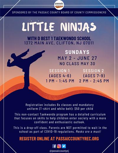 Spring Taekwondo